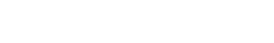the nevada independent logo